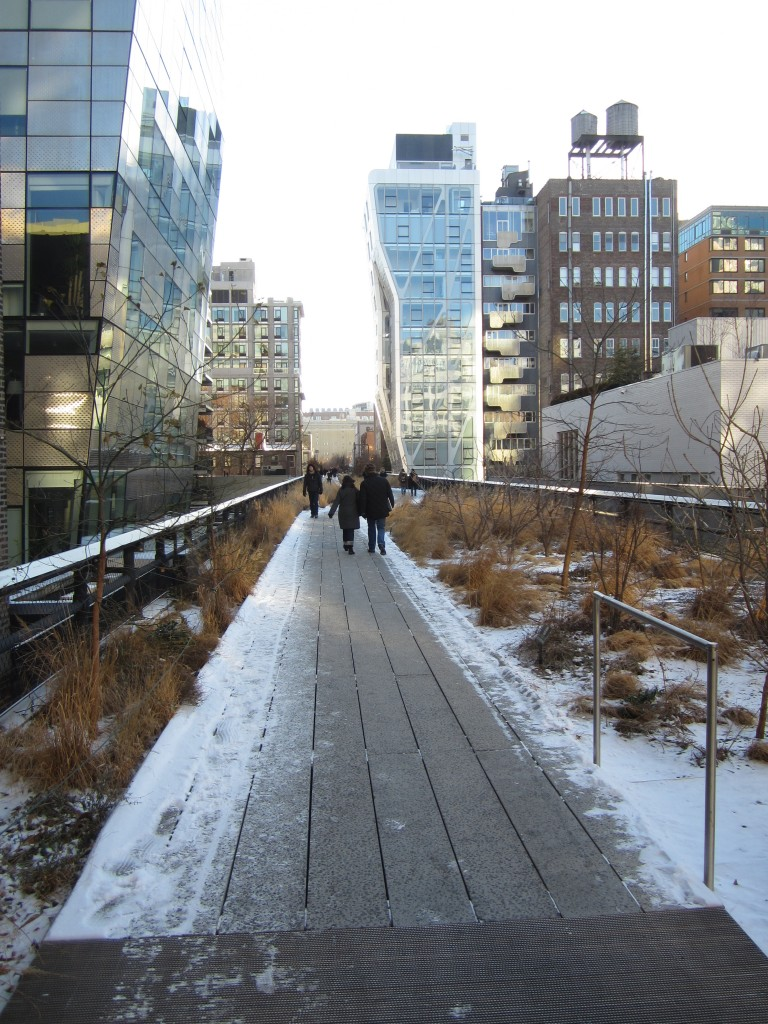 Highline Winter Anne Forster