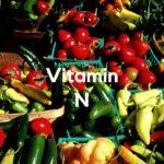 Vitamin N (Networking) für die Jobsuche
